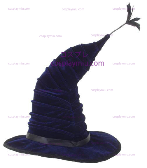 Harry Potter Madame Huiski Hat